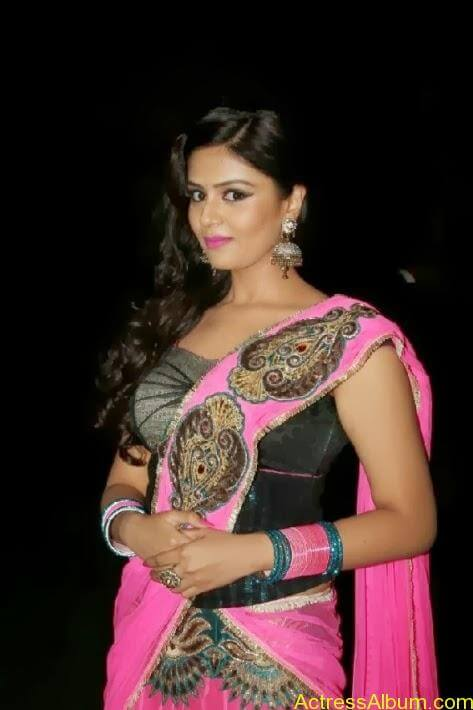 Srimukhi stills in saree (6)