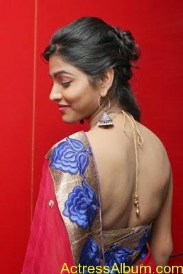 Tamil Actress Dhanshika hot in saree (6)
