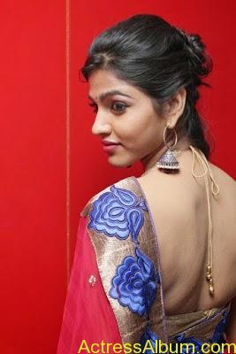 Tamil Actress Dhanshika hot in saree (8)