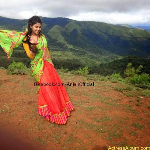 Telugu Actress Anjali Hot 13