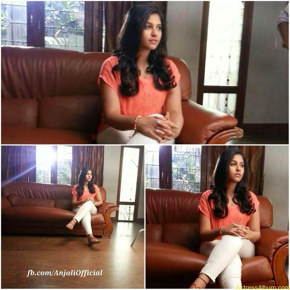 Telugu Actress Anjali Hot 14