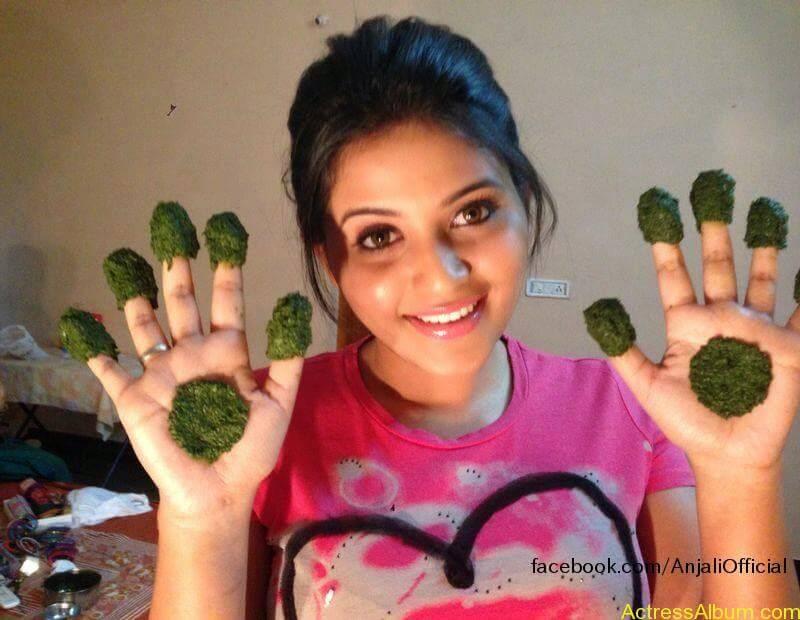 Telugu Actress Anjali Hot 16