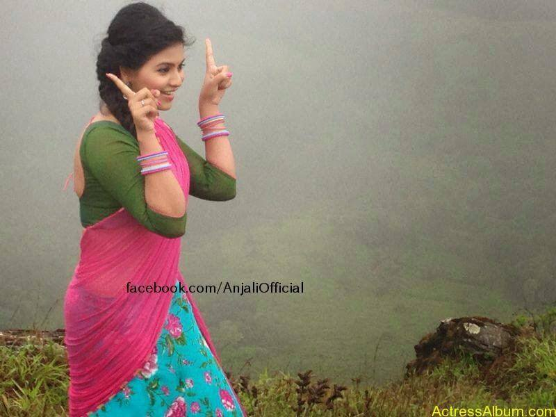 Telugu Actress Anjali Hot 7