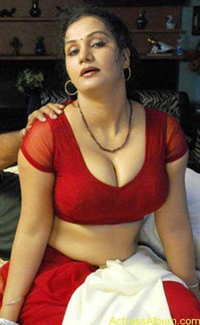 World's Most Sexy South Indian Actresses Hot Photos (11)