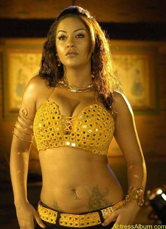 World's Most Sexy South Indian Actresses Hot Photos (4)