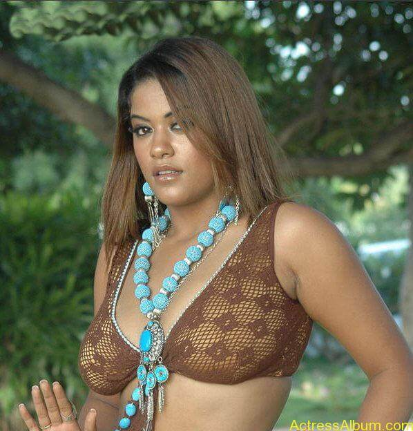 World's Most Sexy South Indian Actresses Hot Photos (5)