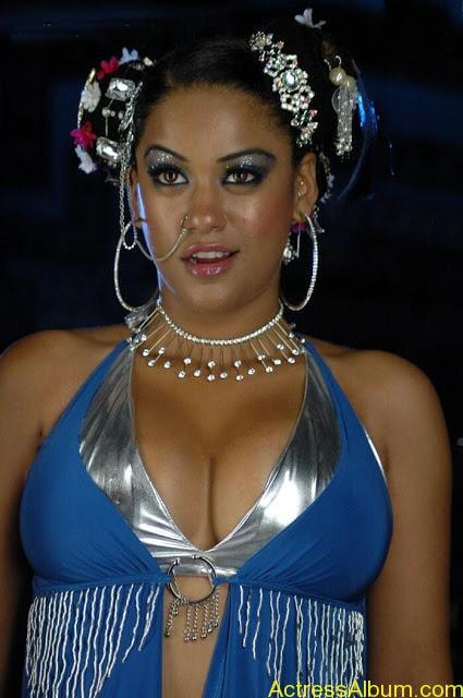 World's Most Sexy South Indian Actresses Hot Photos (8)