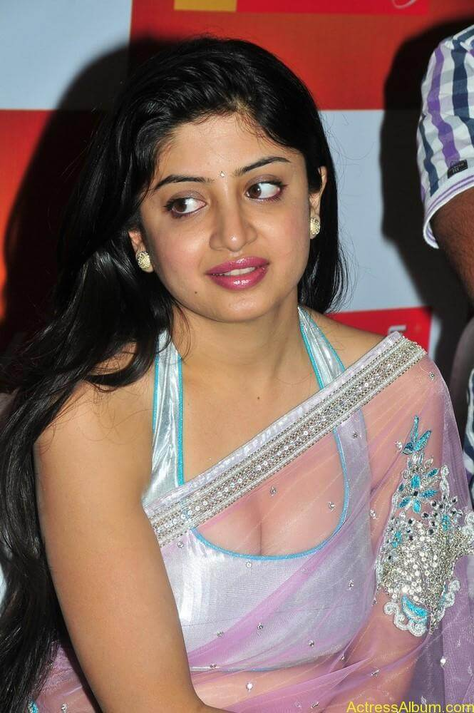 Poonam Kaur Hot Stills at Kalamandir Nagavalli costumes collection (6)