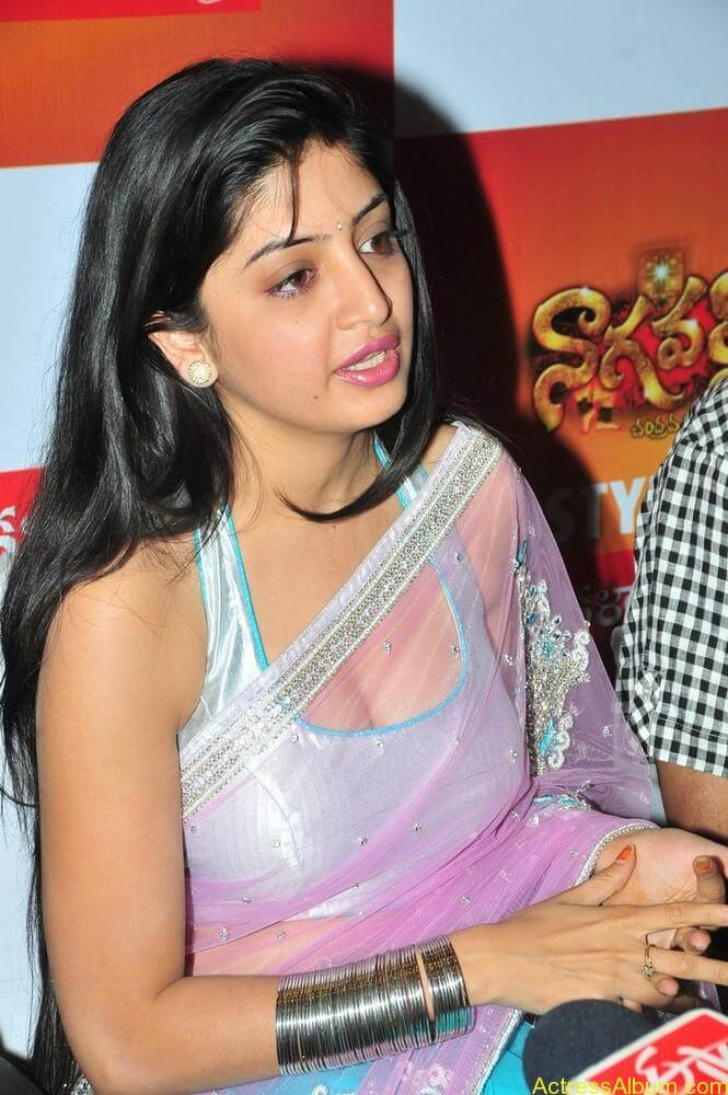 Poonam Kaur Hot Stills at Kalamandir Nagavalli costumes collection (8)