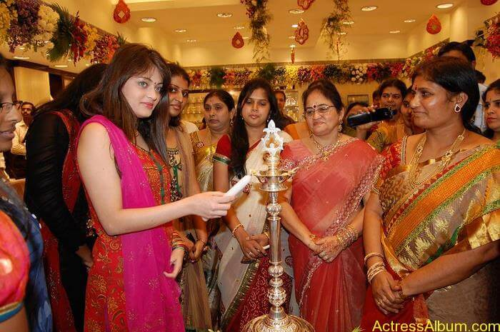 Sneha Ullal Spicy Hot stills At South India Shopping Mall Launch (12)