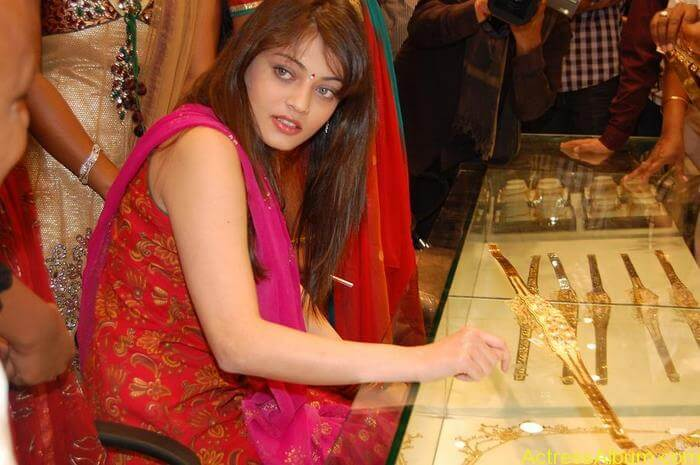 Sneha Ullal Spicy Hot stills At South India Shopping Mall Launch (9)