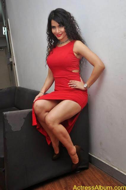 Ritu-Sachdev-Stills-At-Boom-Boom-Movie-Audio-Launch-5
