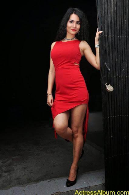 Ritu-Sachdev-Stills-At-Boom-Boom-Movie-Audio-Launch-9