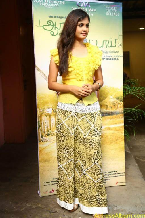 acress-aashritha-stills-at-orange-mittai-movie-press-meet-13
