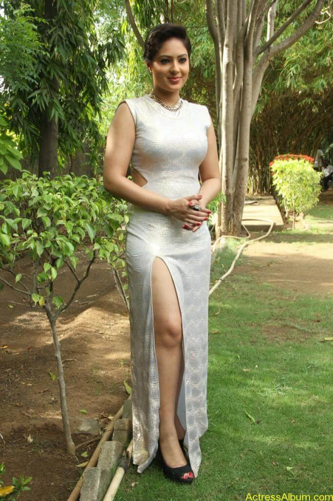 Actress Nikesha Patel Hot Stills - 0