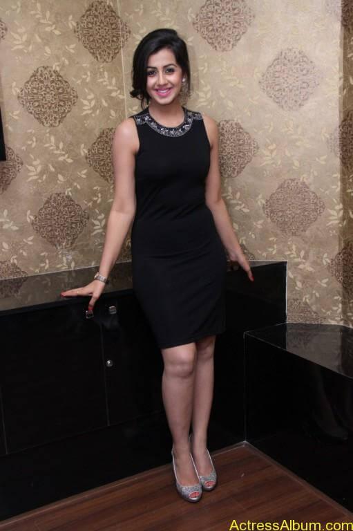 Actress Nikki Galrani Latest Photos - 1