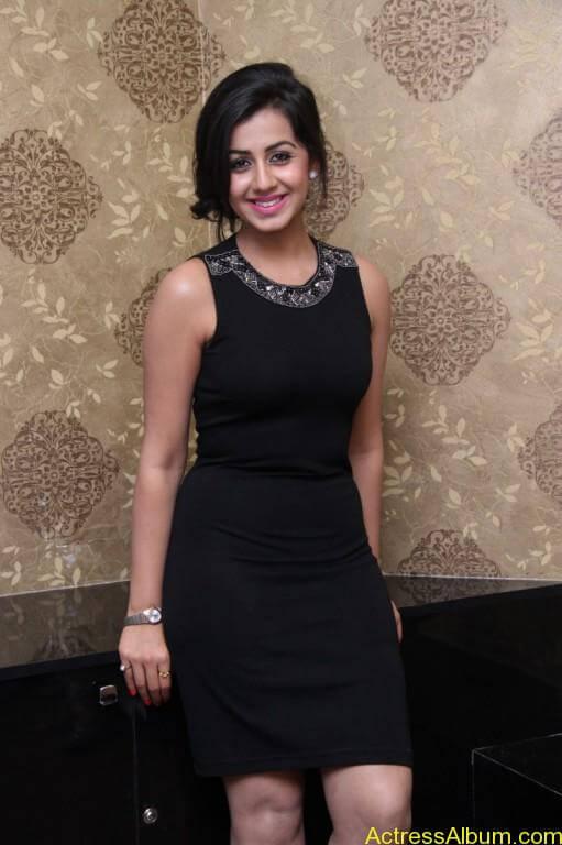 Actress Nikki Galrani Latest Photos - 2
