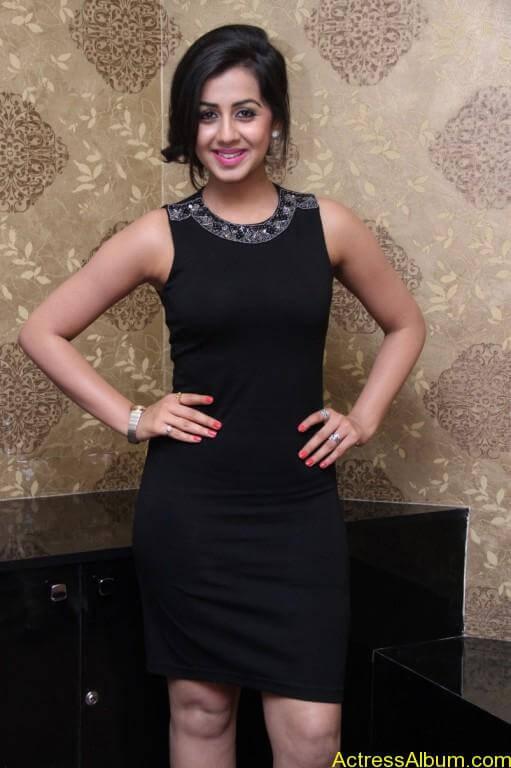 Actress Nikki Galrani Latest Photos - 3