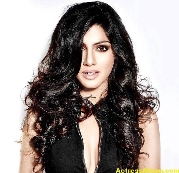 Actress Sapna Pabbi Photoshoot Stills - 13