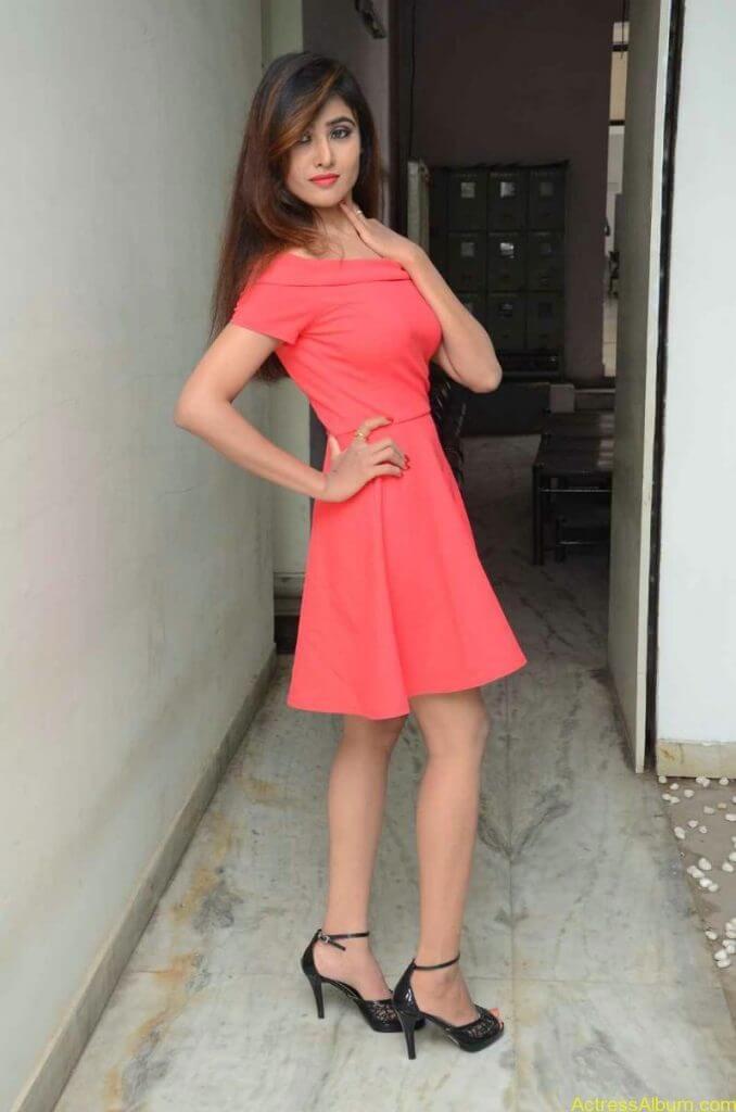 actress-soni-charishta-latest-stills (1)