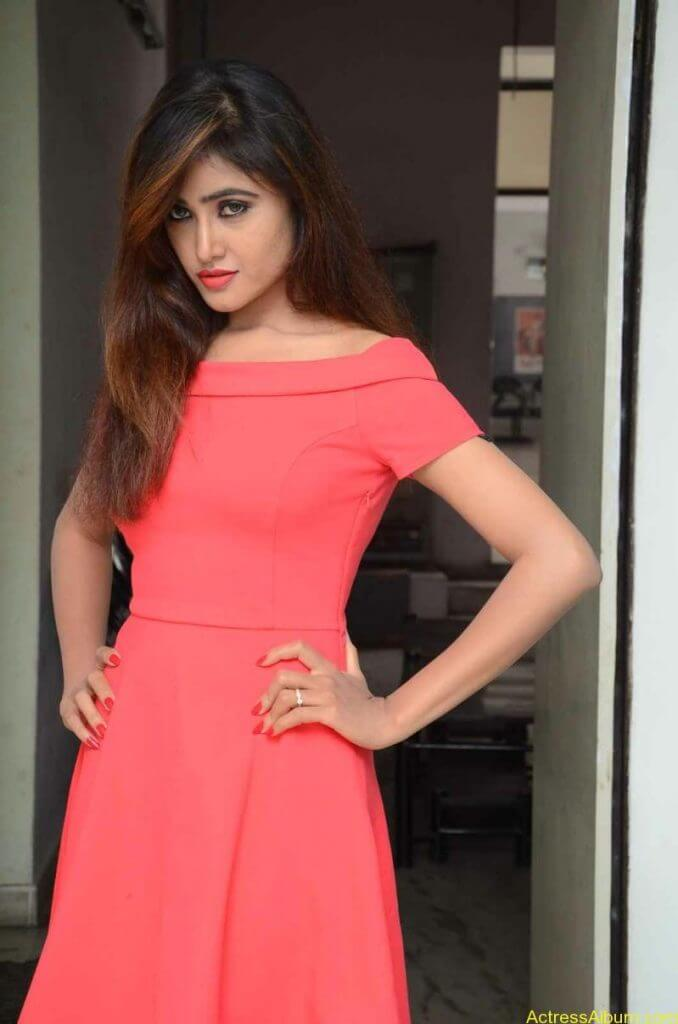 actress-soni-charishta-latest-stills (11)