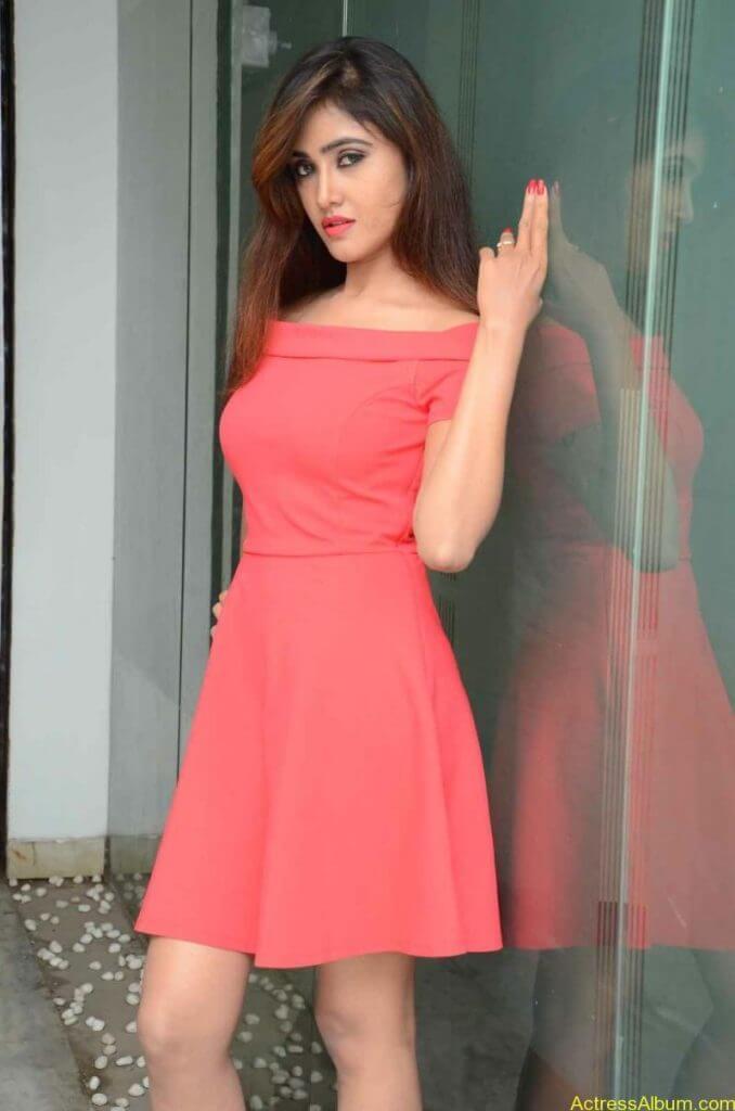 actress-soni-charishta-latest-stills (15)
