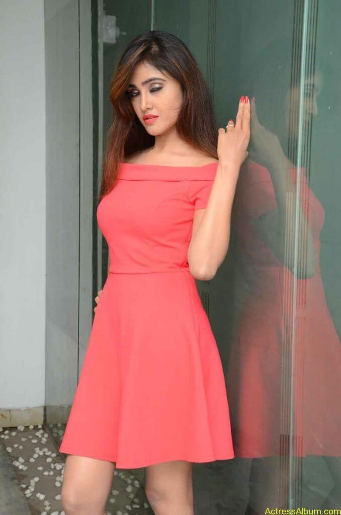 actress-soni-charishta-latest-stills (16)