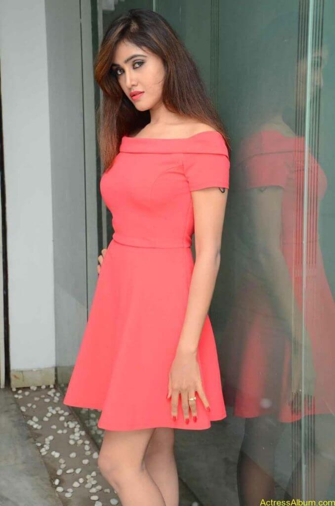 actress-soni-charishta-latest-stills (17)