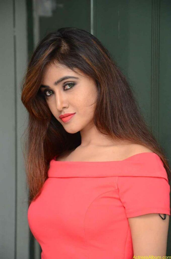 actress-soni-charishta-latest-stills (18)