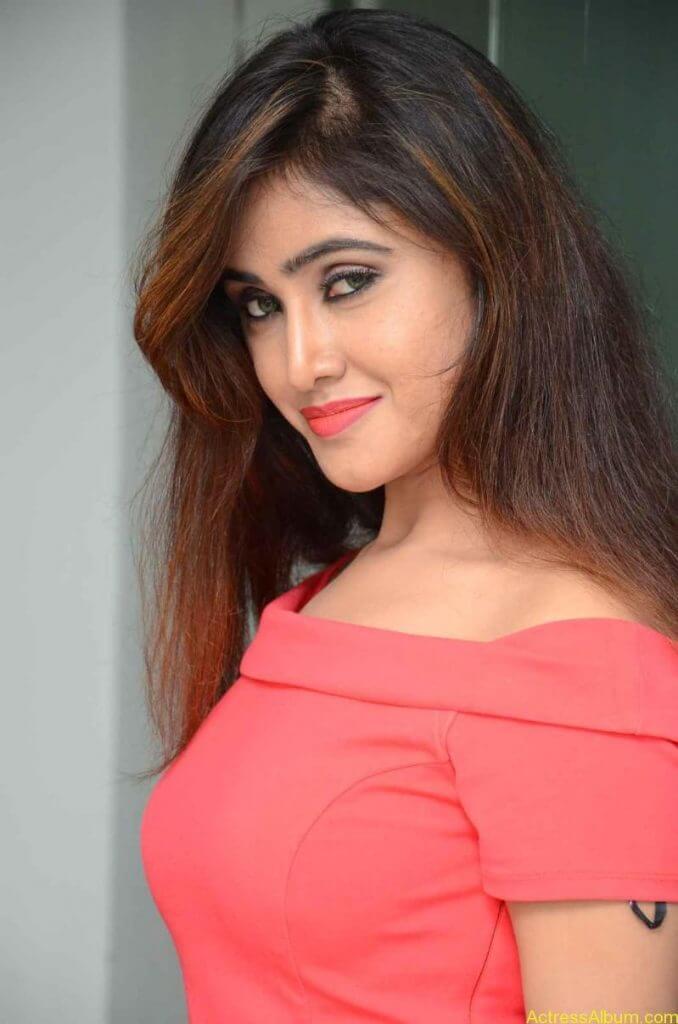 actress-soni-charishta-latest-stills (19)