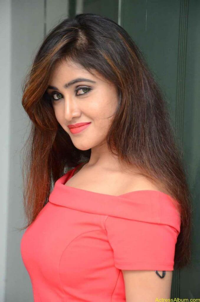 actress-soni-charishta-latest-stills (20)