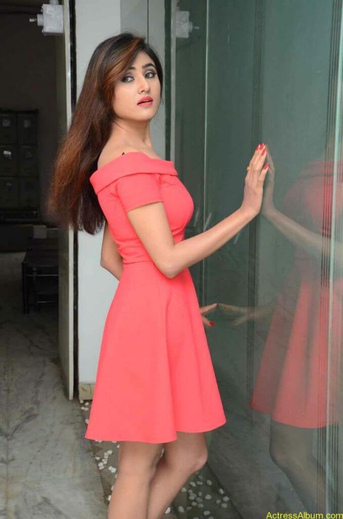 actress-soni-charishta-latest-stills (22)