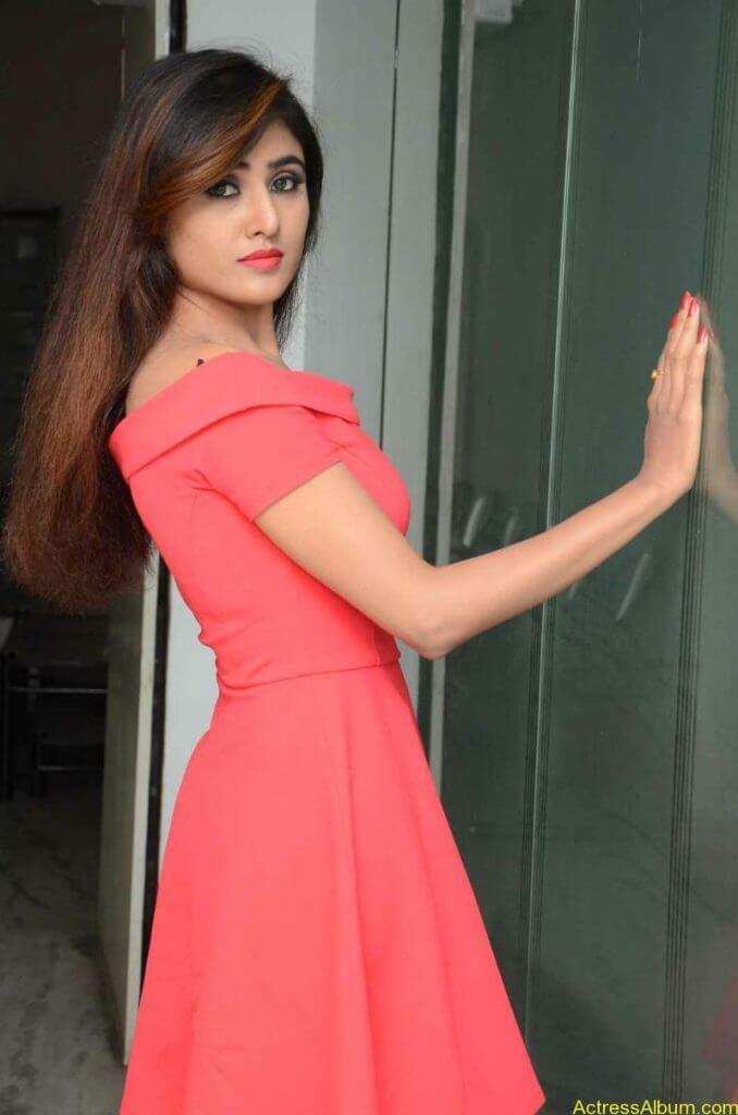 actress-soni-charishta-latest-stills (23)