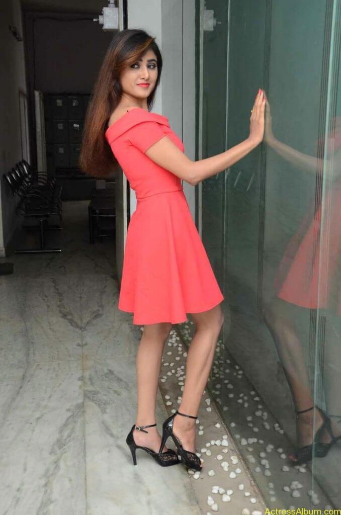actress-soni-charishta-latest-stills (24)