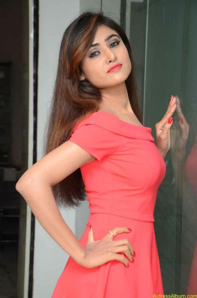 actress-soni-charishta-latest-stills (26)