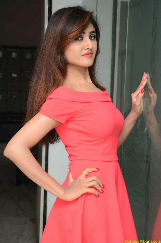 actress-soni-charishta-latest-stills (27)