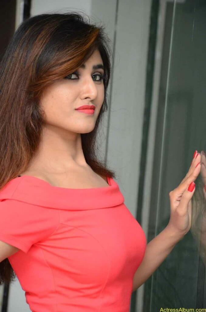 actress-soni-charishta-latest-stills (28)