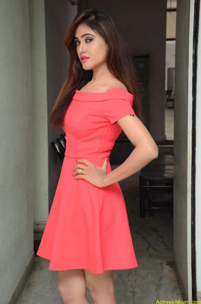actress-soni-charishta-latest-stills (3)