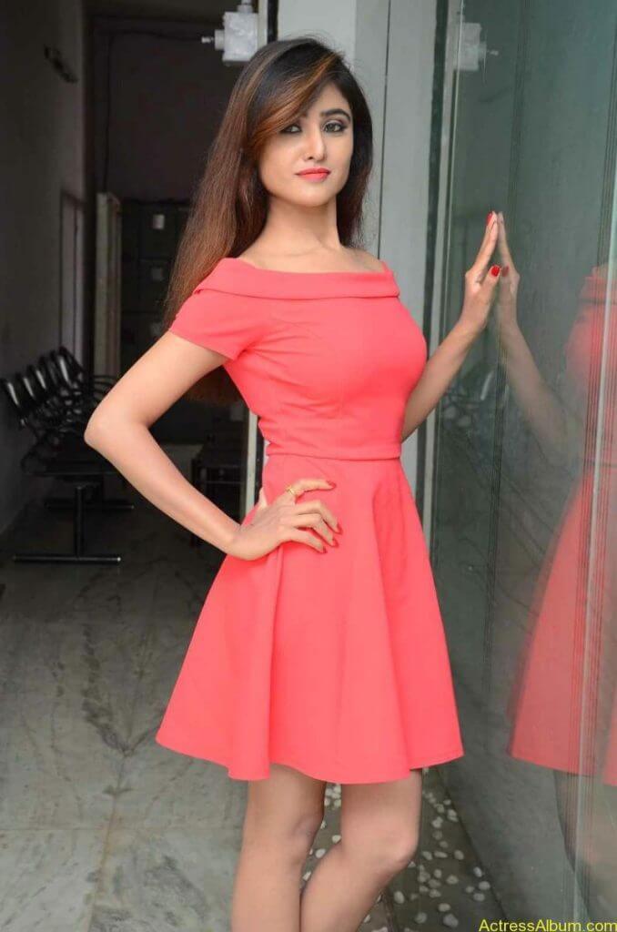 actress-soni-charishta-latest-stills (30)