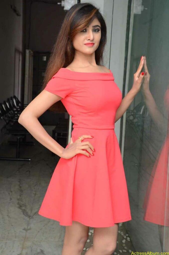 actress-soni-charishta-latest-stills (31)