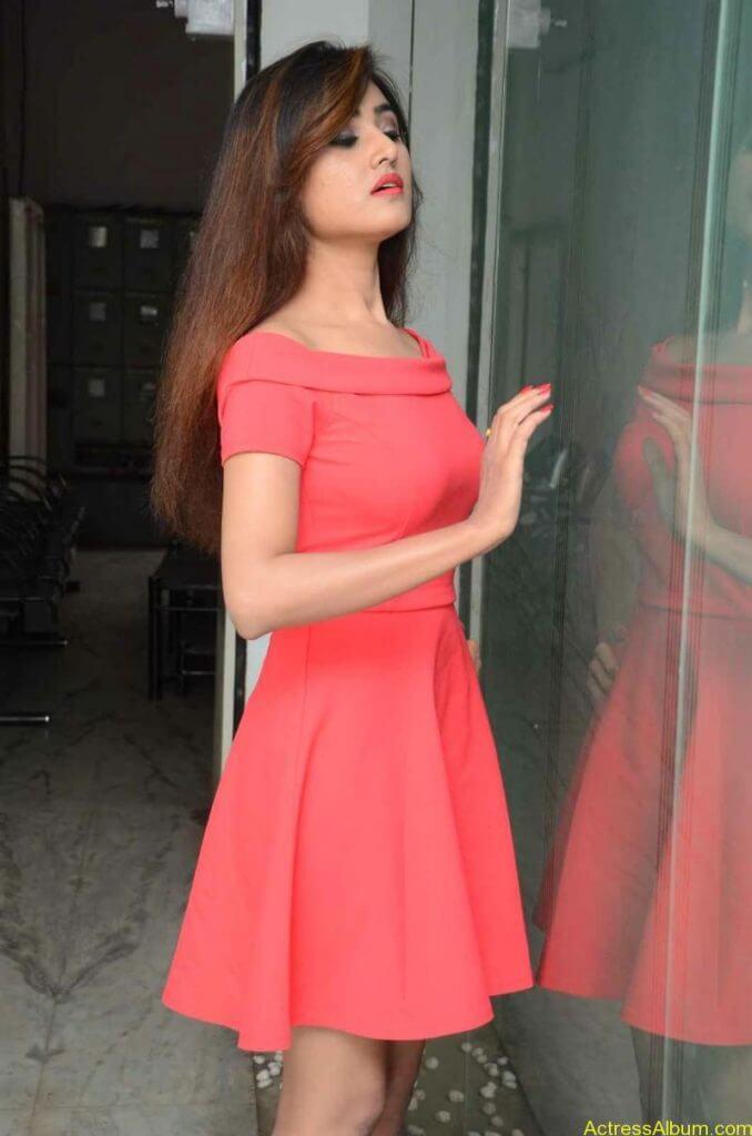 actress-soni-charishta-latest-stills (35)