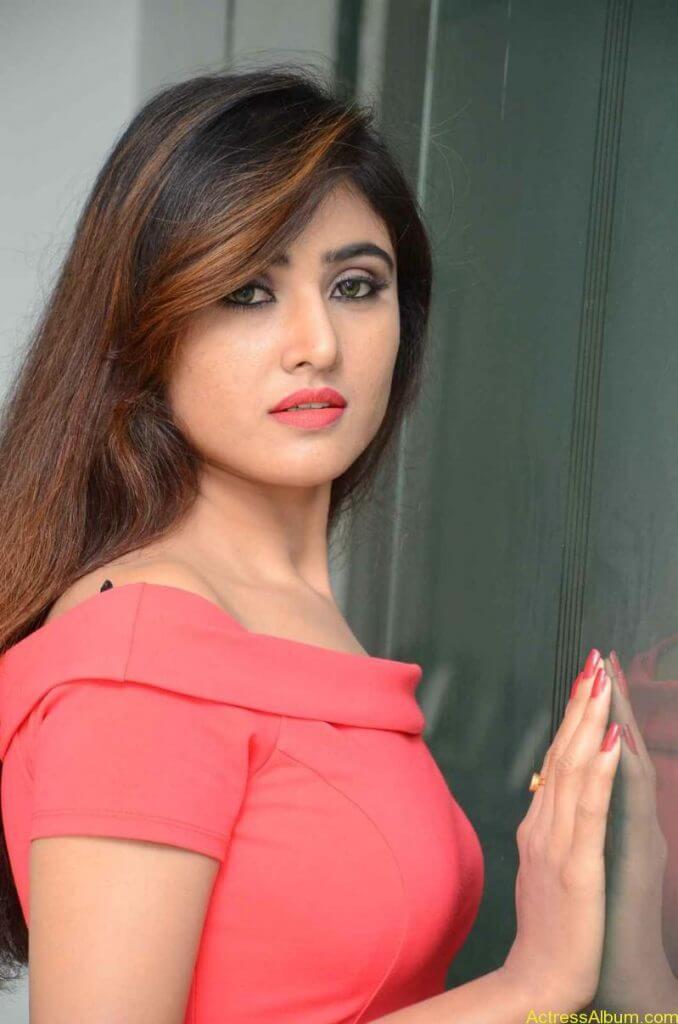 actress-soni-charishta-latest-stills (36)
