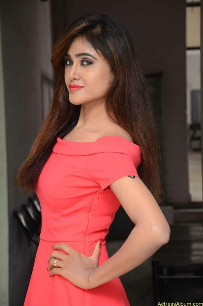 actress-soni-charishta-latest-stills (4)