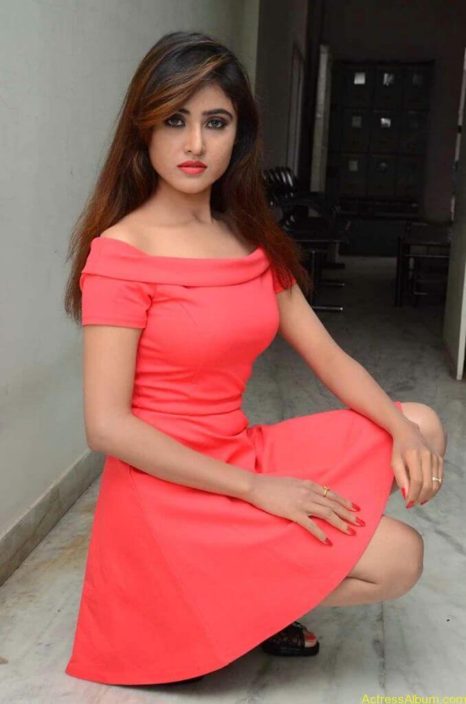 actress-soni-charishta-latest-stills (45)