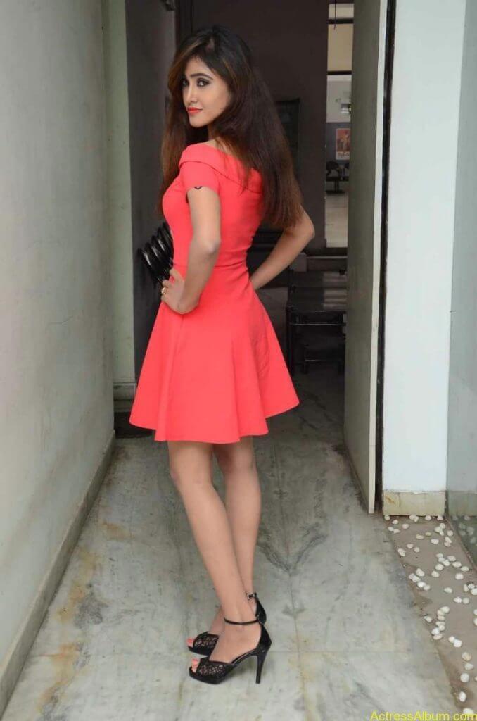 actress-soni-charishta-latest-stills (6)