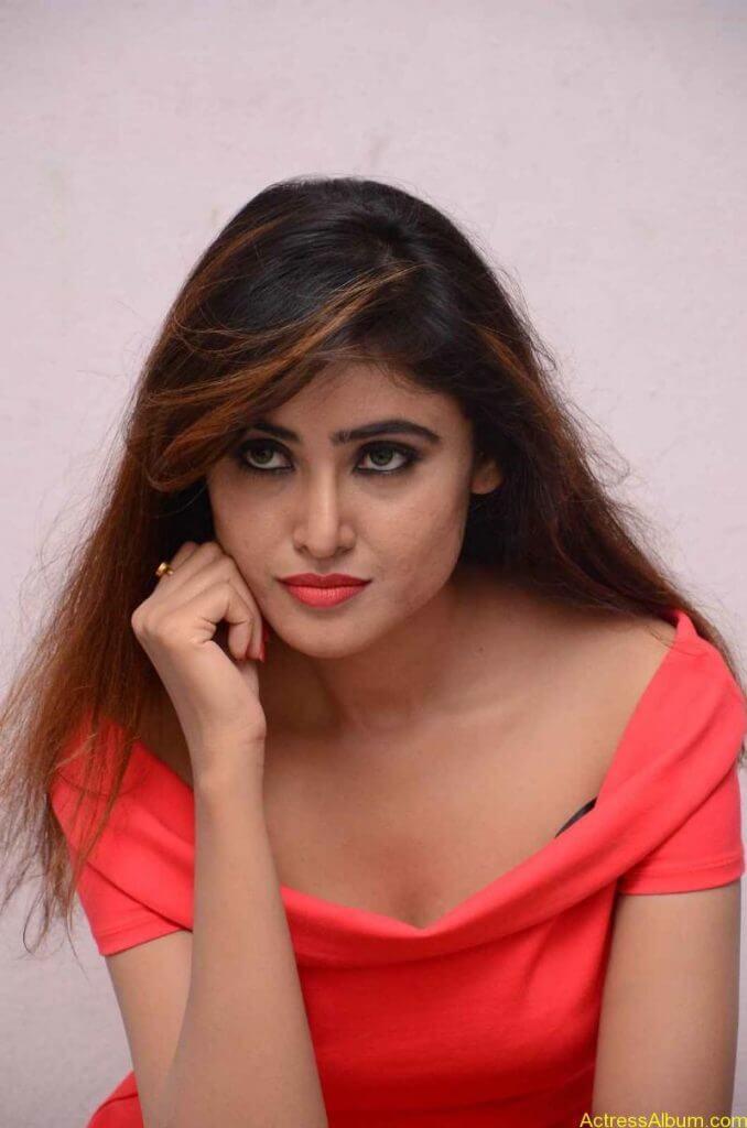 actress-soni-charishta-latest-stills (85)