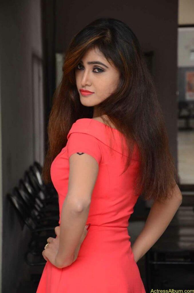 actress-soni-charishta-latest-stills (9)