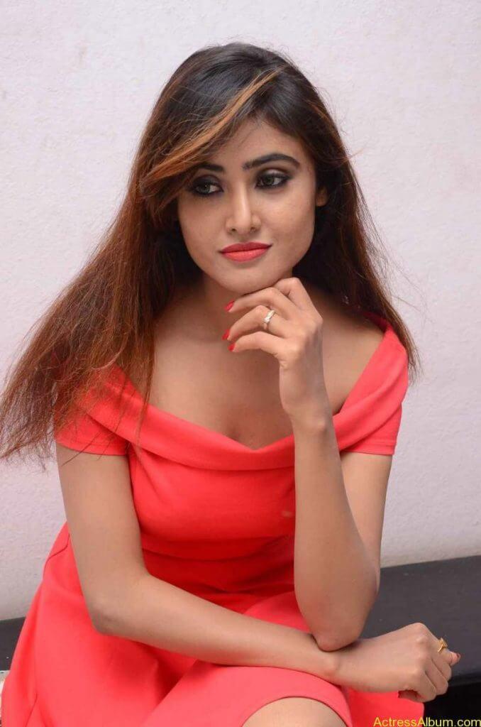 actress-soni-charishta-latest-stills (91)