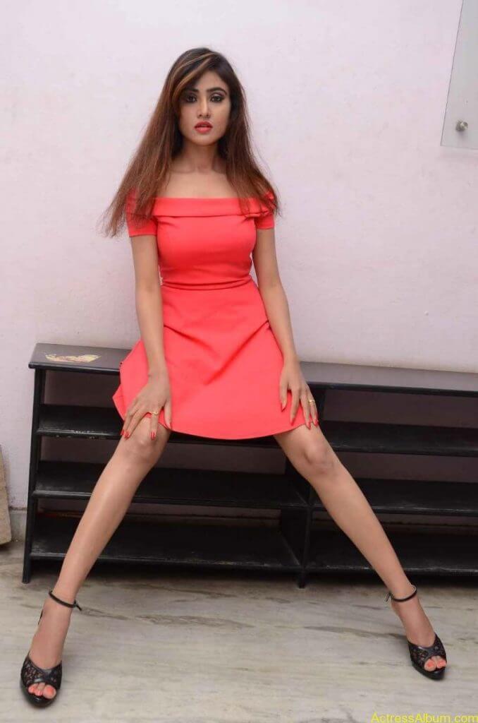 actress-soni-charishta-latest-stills (92)