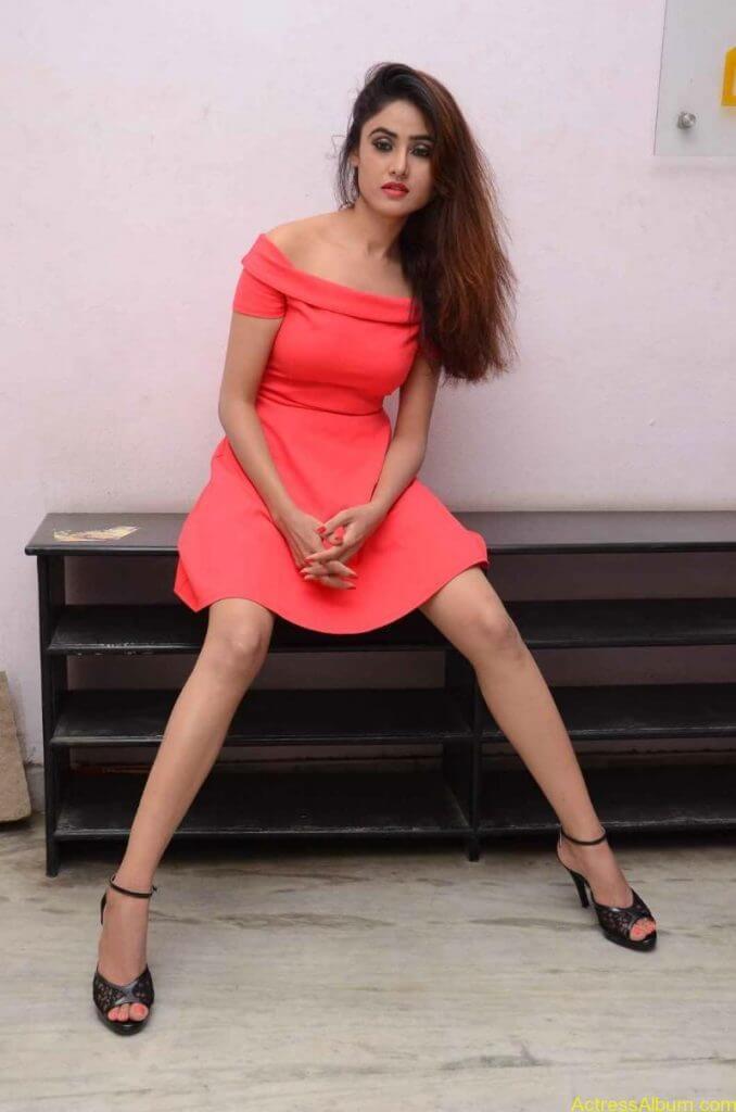 actress-soni-charishta-latest-stills (96)